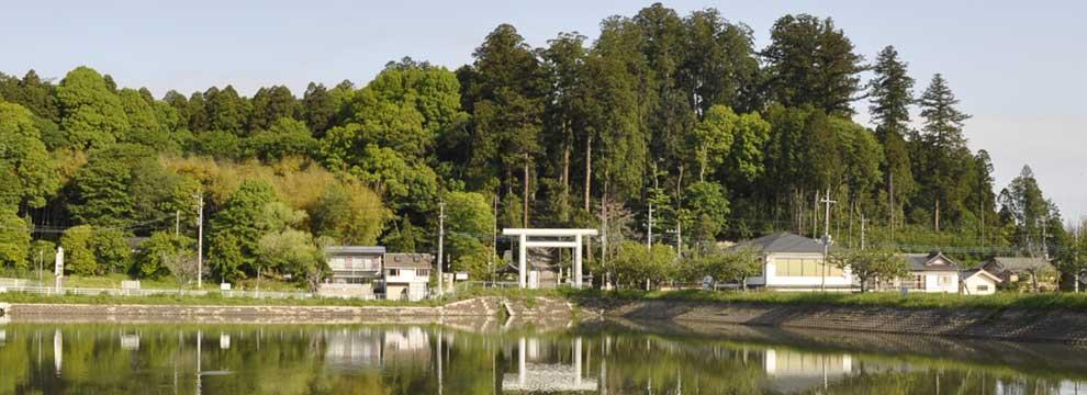 静神社の鳥居と自然環境